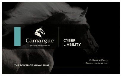 Camargue_RiskManagement3.003.jpg
