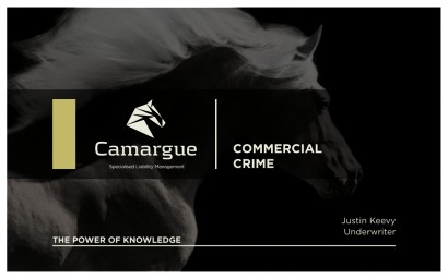 Camargue_RiskManagement3.004.jpg