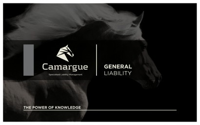 Camargue_RiskManagement3.006.jpg