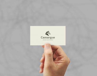 business-card-mockup-04a.jpg